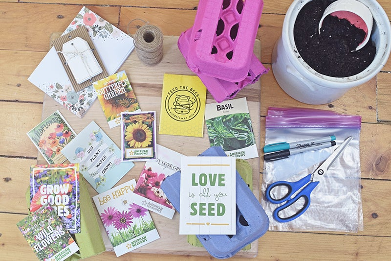 Earth Day Projects - DIY Seed Starting Kit Ingredients
