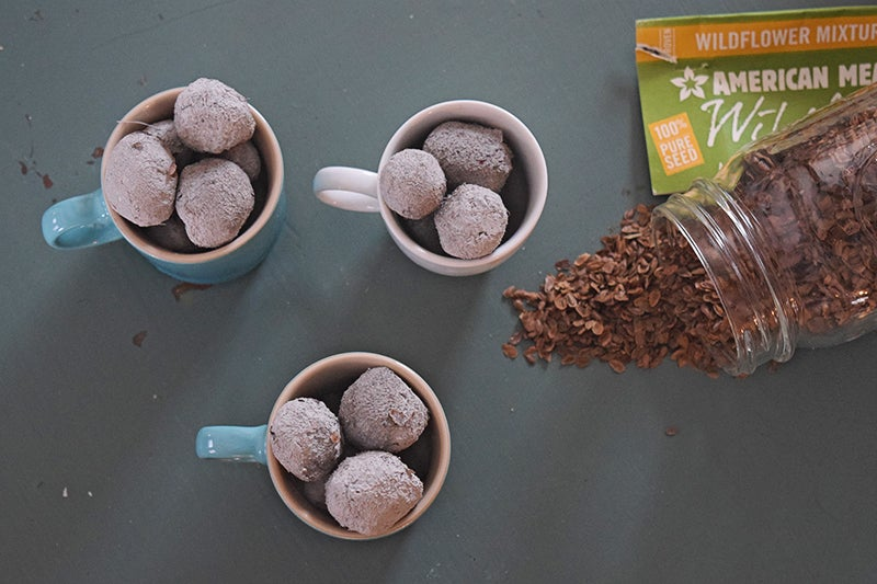 Diy Garden Gifts: Finished Seed Bombs