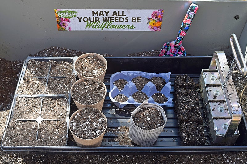 How to Start Seeds - Different Pots