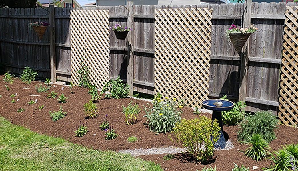 Monarch Magnet Pre Planned Garden 2