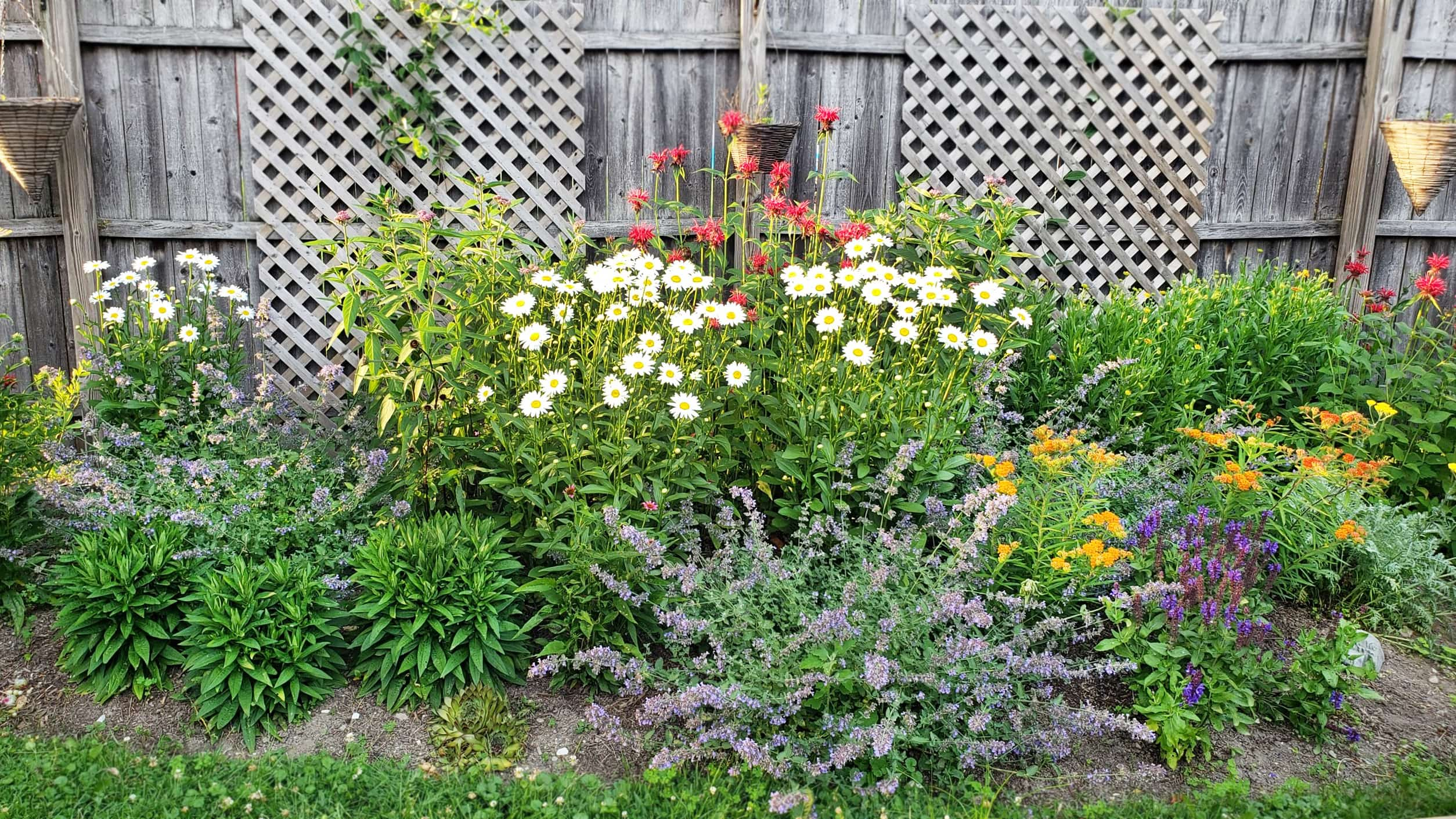 Monarch Magnet Pre Planned Garden 4