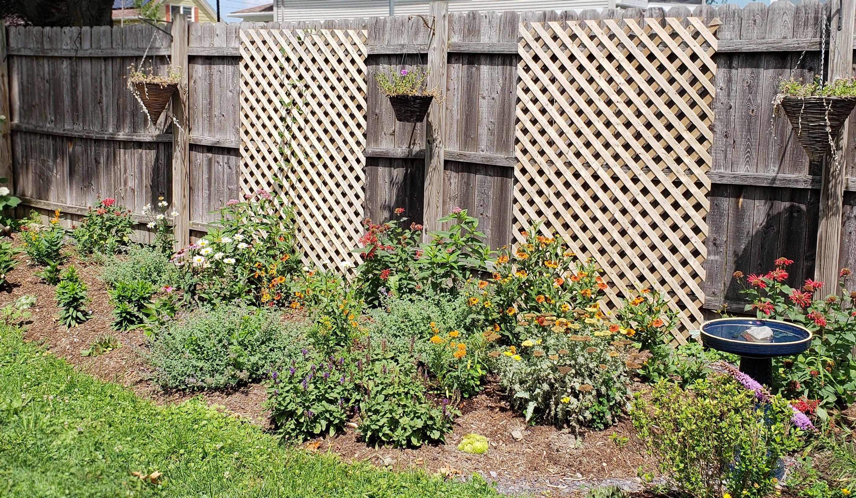 Monarch Magnet Pre Planned Garden 3