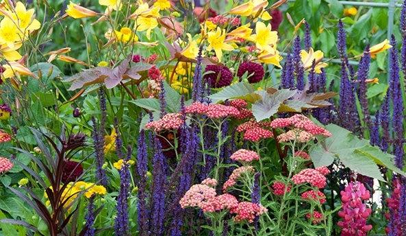 Pre-Planned Gardens