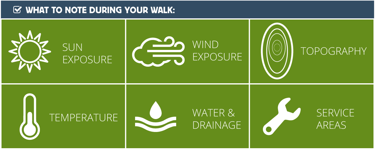 what to note during your walk
