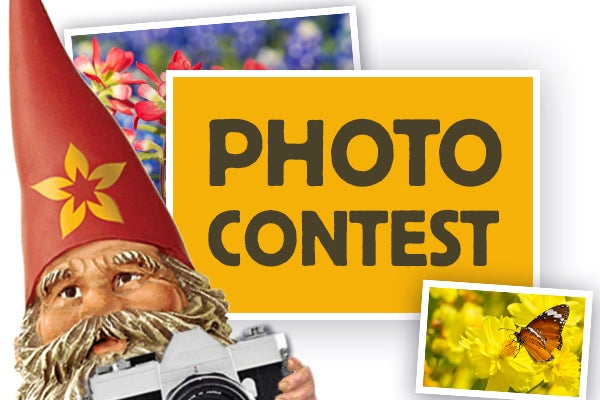 american meadows customer photo contest