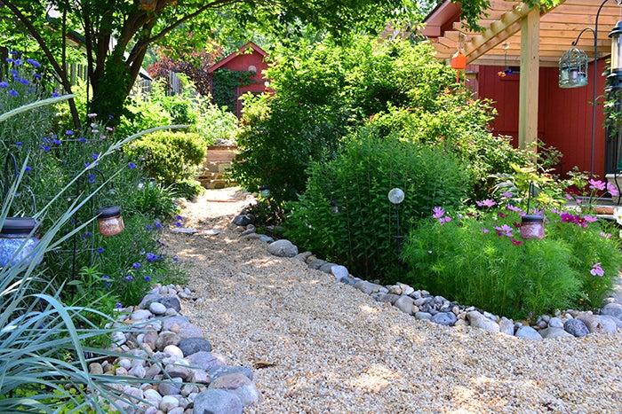 annual wildflower garden walkway