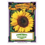 Forget Me Not Seed Packet Sunflower