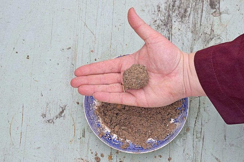 molding seeds