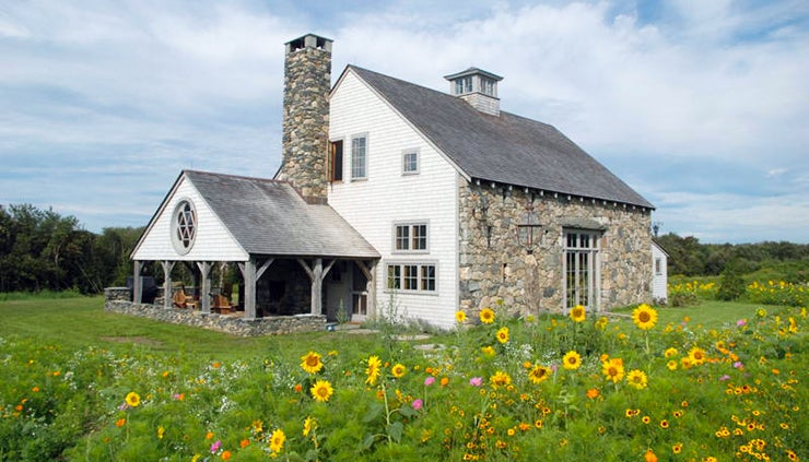 wild sunflowers next to a barn