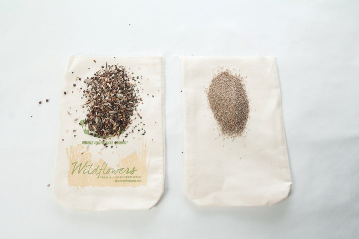 Wildflower Seed Comparison