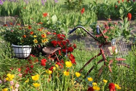 bike sculpture in garden