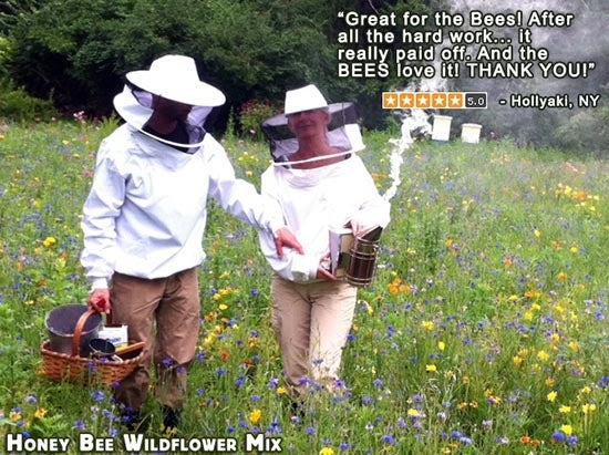 beekeepers walking through a meadow