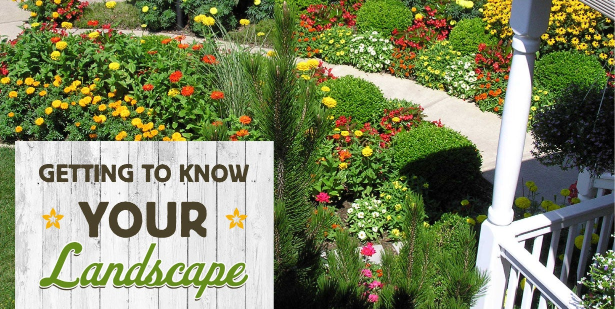 getting to know your landscape