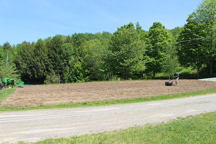 rolling the soil
