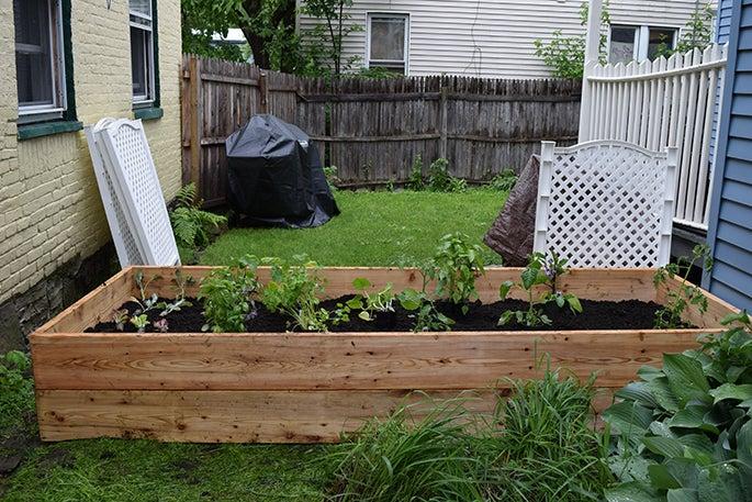 Veggie Raised Bed
